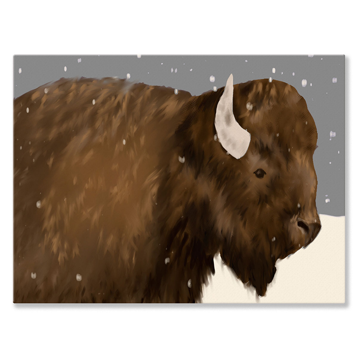 Oopsy Daisy - Canvas Wall Art Bridget Bison 24x18 By Meghann O'hara