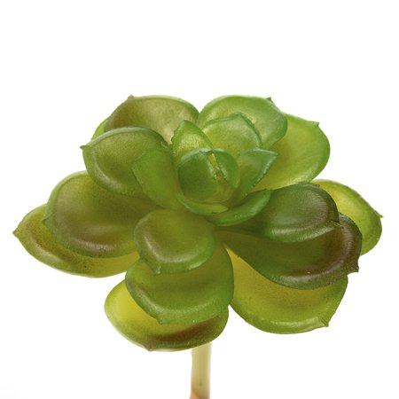 Assorted 10Pcs Mini Succulents Artificial Cactus Plants Unpotted for DIY Home Decor (Green) (Artificial Succulent)
