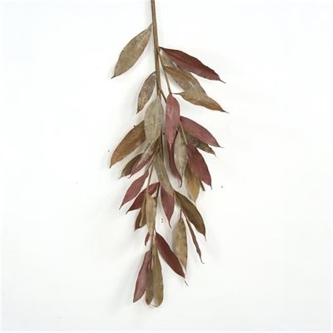 Distinctive Designs DW-1618A Small Natural Brown Myrtle Branch - Pack of 6