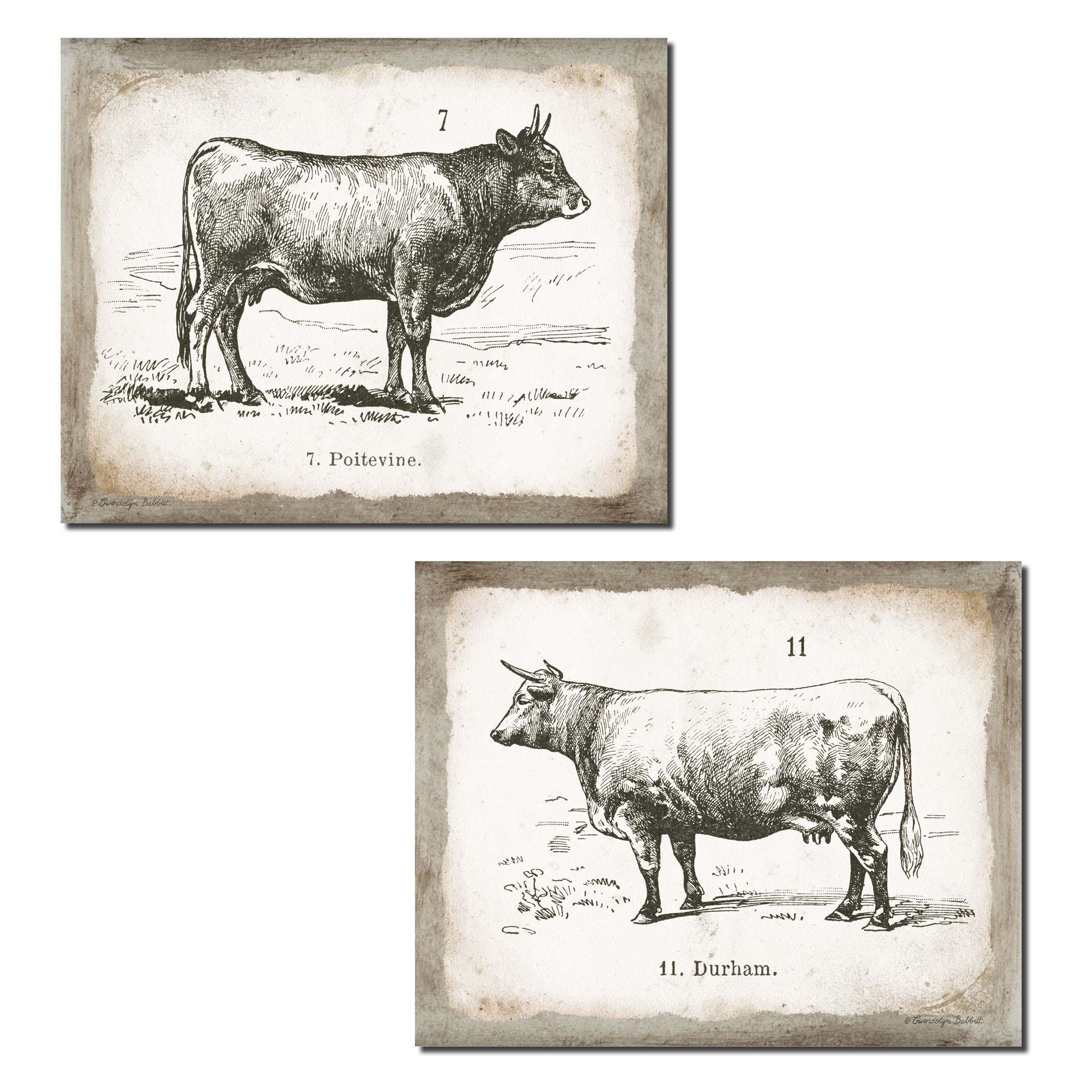Lovely Vintage Ephemera French Cow and Bull Set; French Country Decor; Two 14x11in Unframed Paper Posters