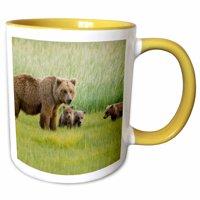 3dRose Alaskan Brown Bears, Katmai National Park, Alaska - US02 HGA0113 - Howie Garber - Two Tone Yellow Mug, 11-ounce
