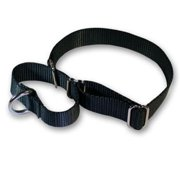 Strapworks MC-BL1-S 1 W inch Basic Line Martingale Dog Collar - Small