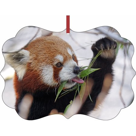 Red Panda in the Snow - - TM Benelux-Shaped Double-Sided Aluminum Hanging Holiday Tree Ornament Made in the U.S.A. - Panda Ornament