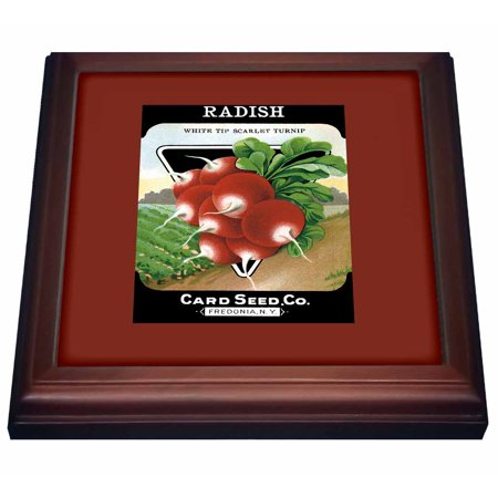 3dRose Radish White Tip Scarlet Turnip Root Vegetable Seed Packet - Trivet with Ceramic Tile, 8 by 8-inch