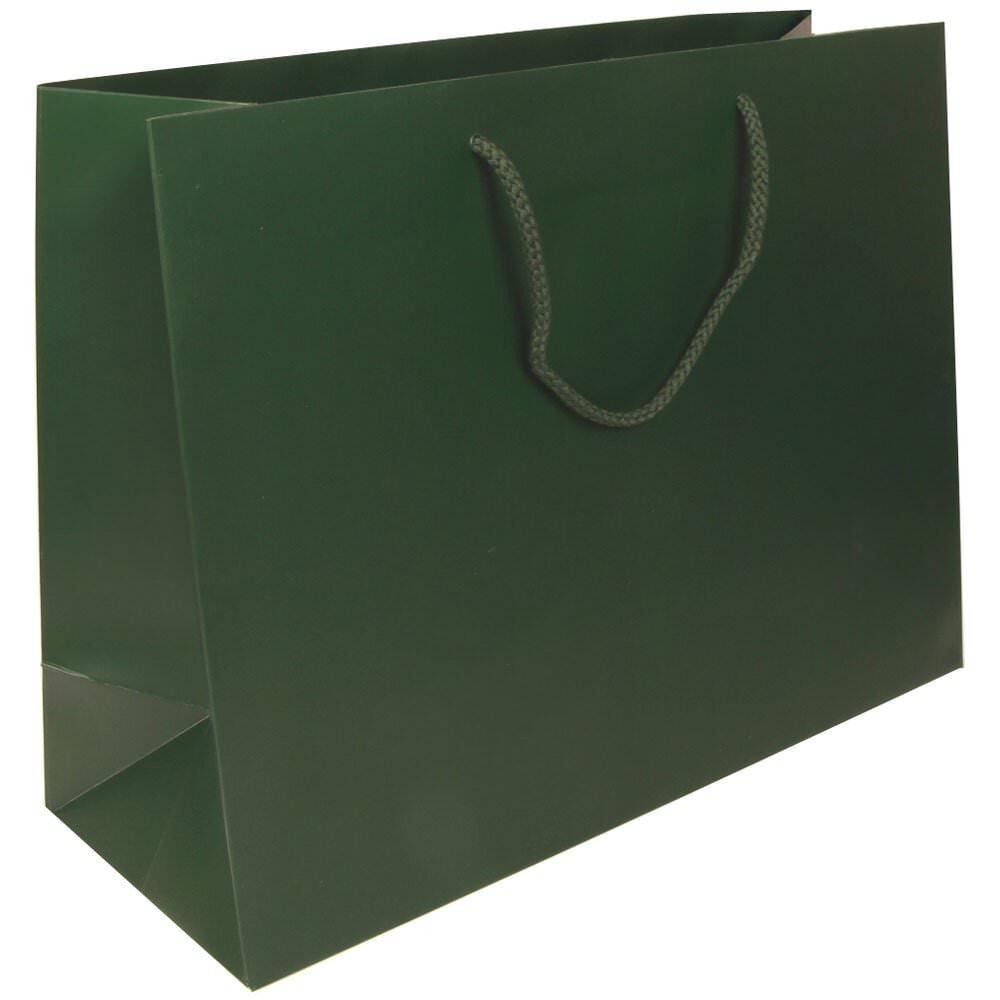JAM Gift Bags - Large Horizontal - 16 x 12 x 6- Hunter Gr...
