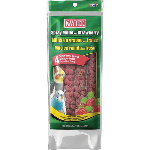 Kaytee Spray Millet, Strawberry, 4-Count