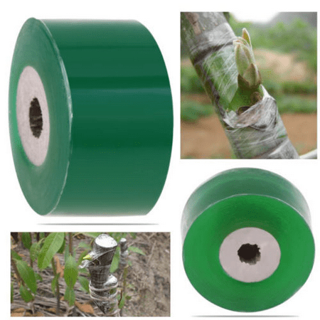 Eco-friendly Grafting Tape for Garden Branch Strapping green