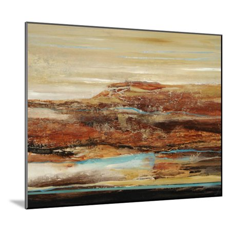 Arroyo II Wood Mounted Print Wall Art By Farrell Douglass