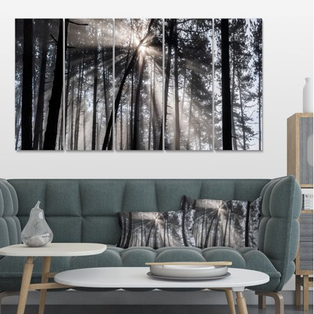 Design Art - Sunbeams through Black White Forest - image 3 of 3