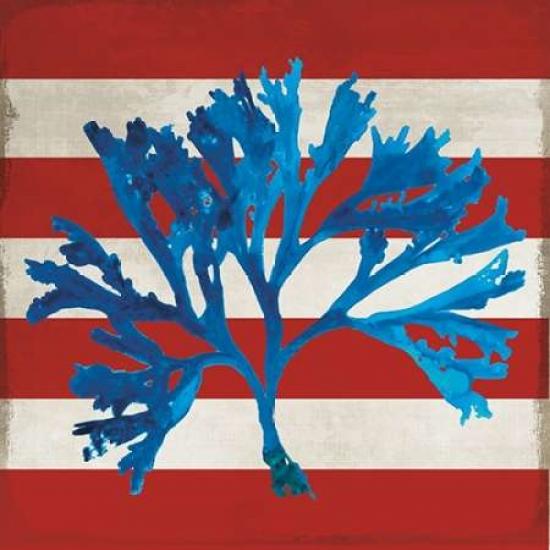 Marine Coral II Poster Print by PI Studio