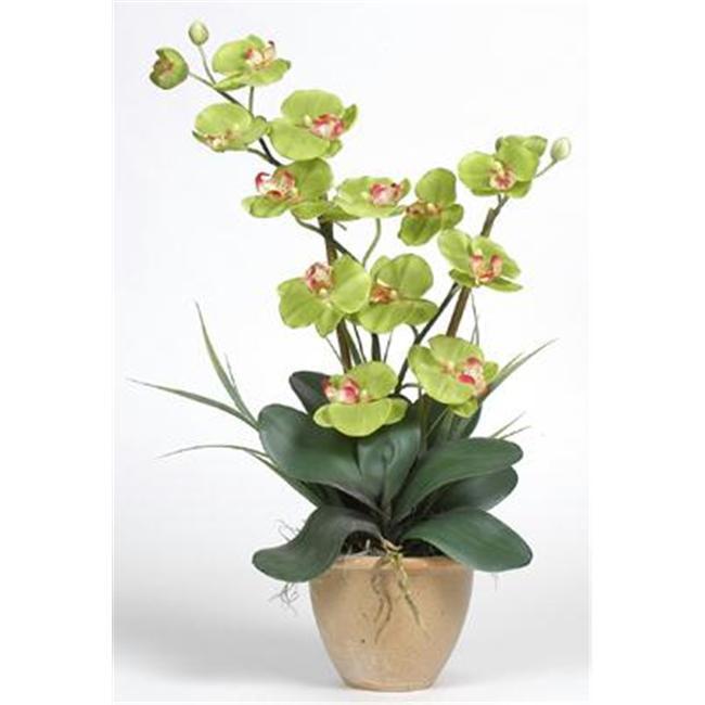 Double Stem Phalaenopsis Silk Orchid Arrangement - image 1 of 1