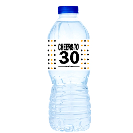 30th Birthday Party Decor (30th Birthday / Anniversary Party Decoration Water Bottle Labels)