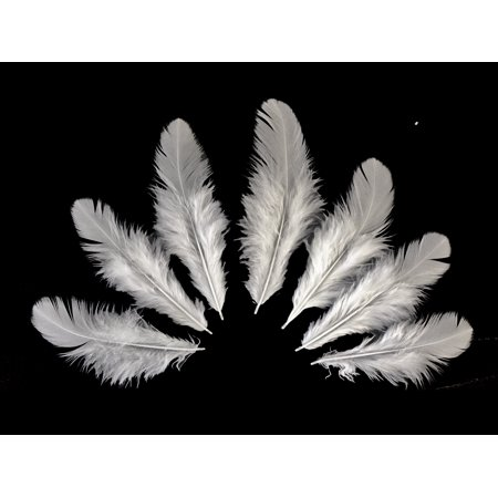1 Pack - Natural White Hen Saddle Feathers 0.10 - Sassy Feather