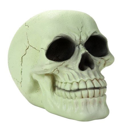 Glow In the Dark Luminescence Skull Halloween Decorative Accessory 3.75 Inch - Decorate Halloween