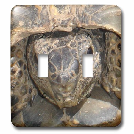 3dRose Reptiles Tortoises - Double Toggle Switch - Tortoise Switch Machine