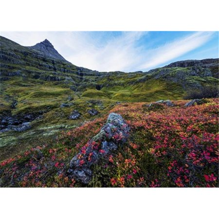 Posterazzi DPI12296383LARGE The Valley in The Fjord Called Mjoifjordur On The Eastern Coast of Iceland - Iceland Poster Print by Robert Postma, 36 x 26 - Large - image 1 de 1