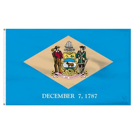 Delaware Today Online - Delaware 8ft x 12ft Nylon Flag