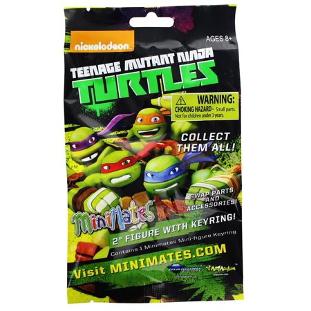 Teenage Mutant Ninja Turtles Minimates Series 2 Blind Bag, One