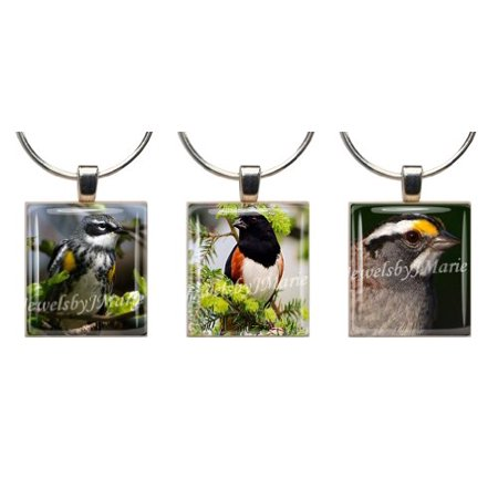 Songbird Glass (Songbirds ~ Scrabble Tile Wine Glass Charms ~ Set Of 3 ~ Stemware Charms/Markers/Pendants)