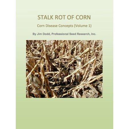 Stalk Rot of Corn - eBook - Corn Stalks Halloween