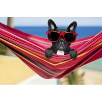 Mainstays Chillin' Dog 100% Cotton Oversized Beach Towel