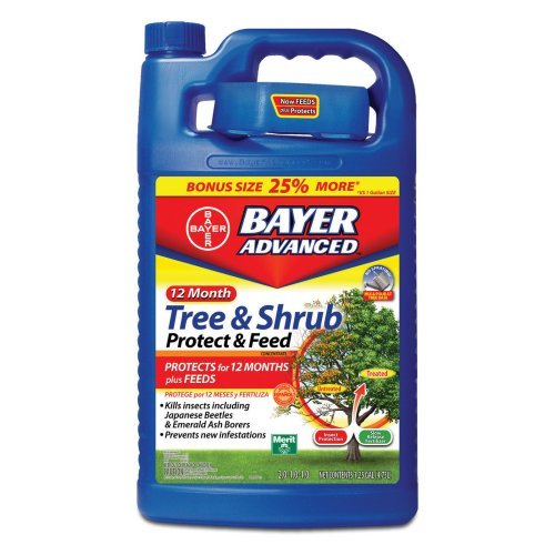 Bayer Advanced 701615 12 Month Tree and Shrub Protect and...
