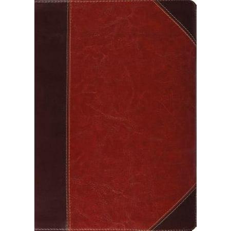 Study Bible-ESV-Portfolio Design