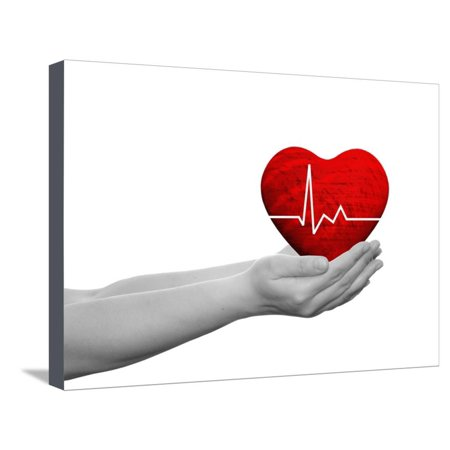 Red Human Heart Sign Or Symbol With Pulse Held In Human Man Or Woman