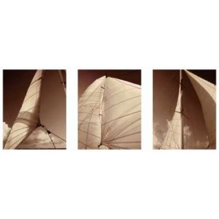 Windward Sails Triptych Poster Print By Alan Hausenflock