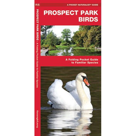 Waterford Park (Pocket Naturalist Guide: Prospect Park Birds: A Folding Pocket Guide to Familiar Species)