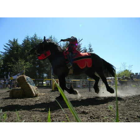 Canvas Print Festival Horse Fairy Festival Medieval Jousting Stretched Canvas 10 x 14](Fairy Festivals)