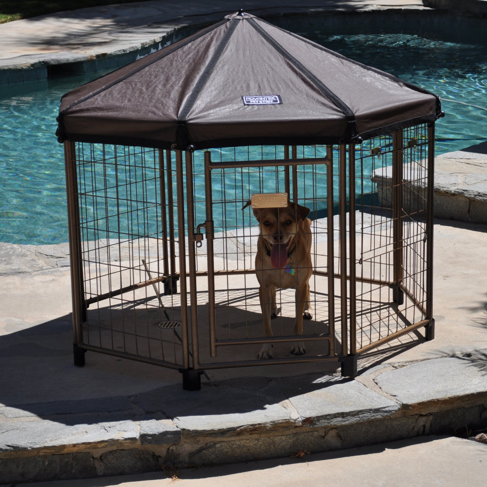Advantek Original Pet Gazebo Small