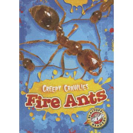 Fire Ants (Best Way To Kill Fire Ants In The House)