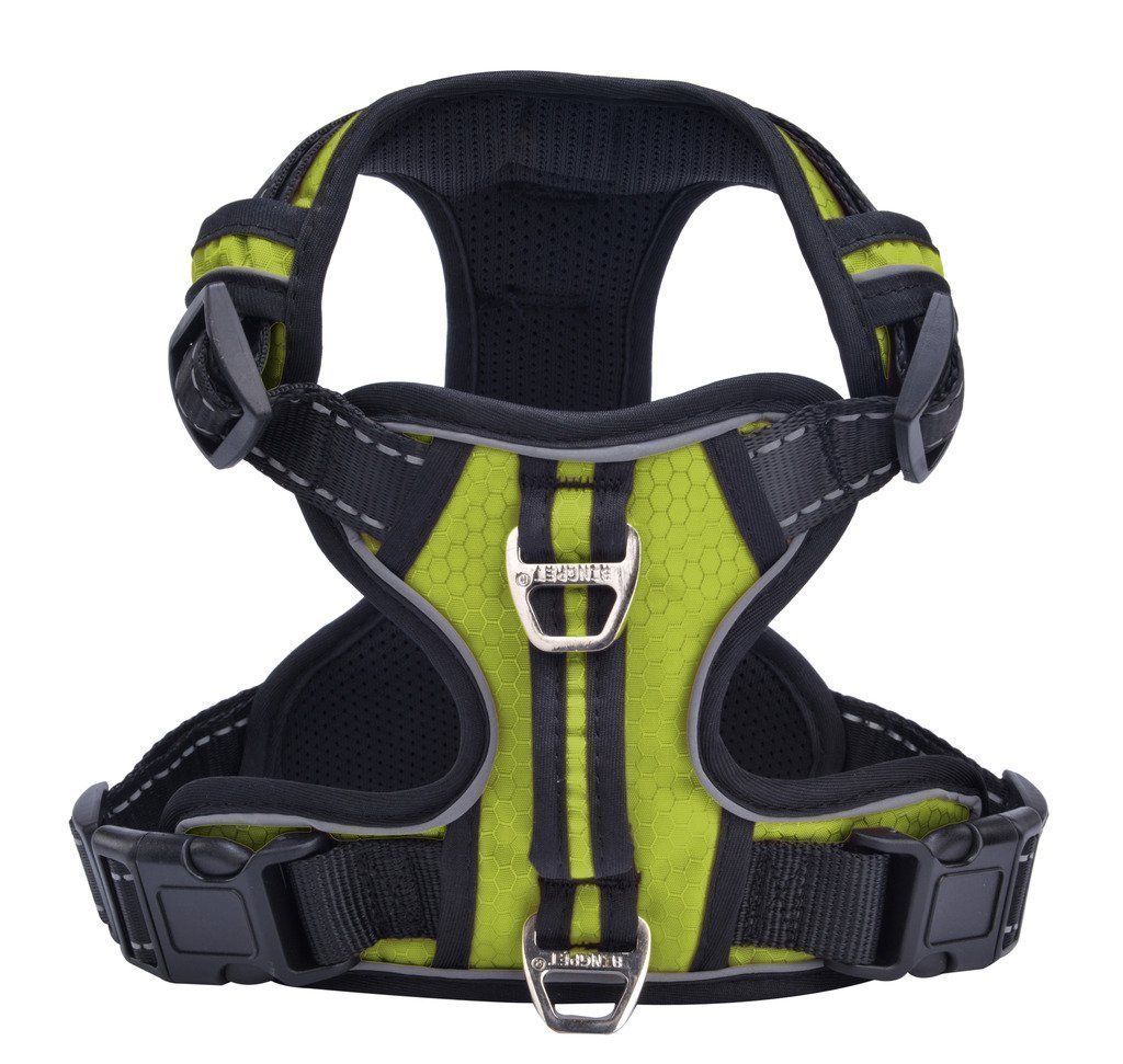 PUPTECK Best Front Range No-Pull Dog Harness with Vertica...