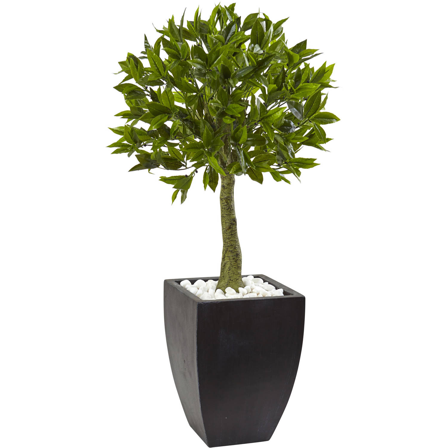 Bay Leaf Topiary with Black Wash Planter UV Resistant (Indoor/Outdoor)