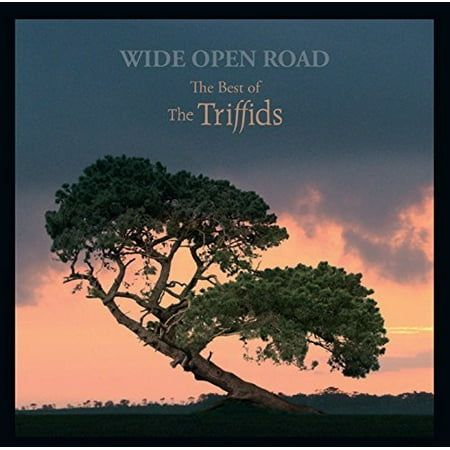 Wide Open Road: Best Of The Triffids (CD) (Test Drive Off Road Wide Open Soundtrack)
