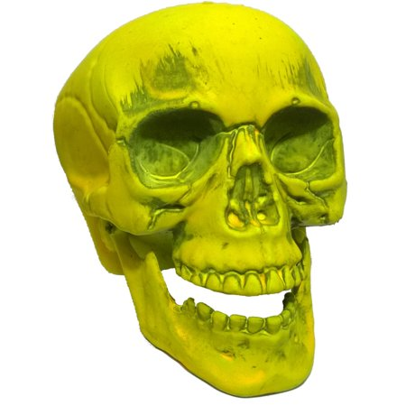 Yellow Skeleton Skull 7