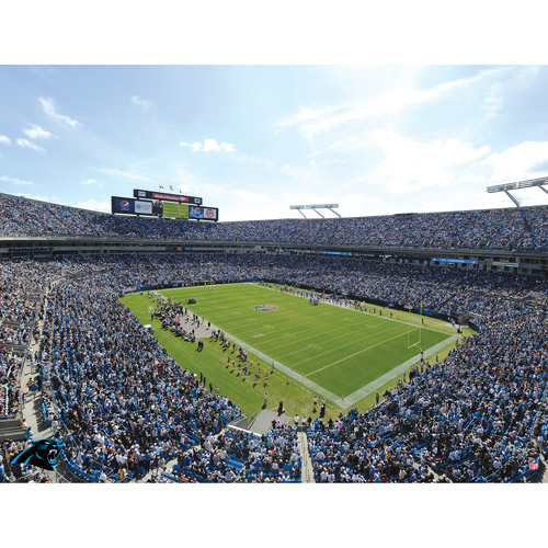 Artissimo Designs NFL Panthers Stadium Canvas, 22x28