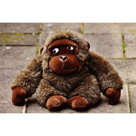 LAMINATED POSTER Stuffed Animal Soft Toy Gorilla Monkey Cute Toys Poster Print 24 x 36](Gorilla Stuffed Animal)