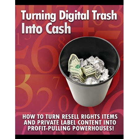 Turning Digital Trash into Cash - eBook (Cash For Your Trash Scrap Recycling In America)