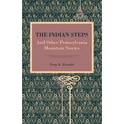 Metalmark: The Indian Steps (Paperback)