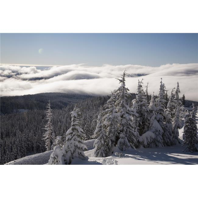 Mountain During Winter Poster Print, 38 x 24 - image 1 of 1