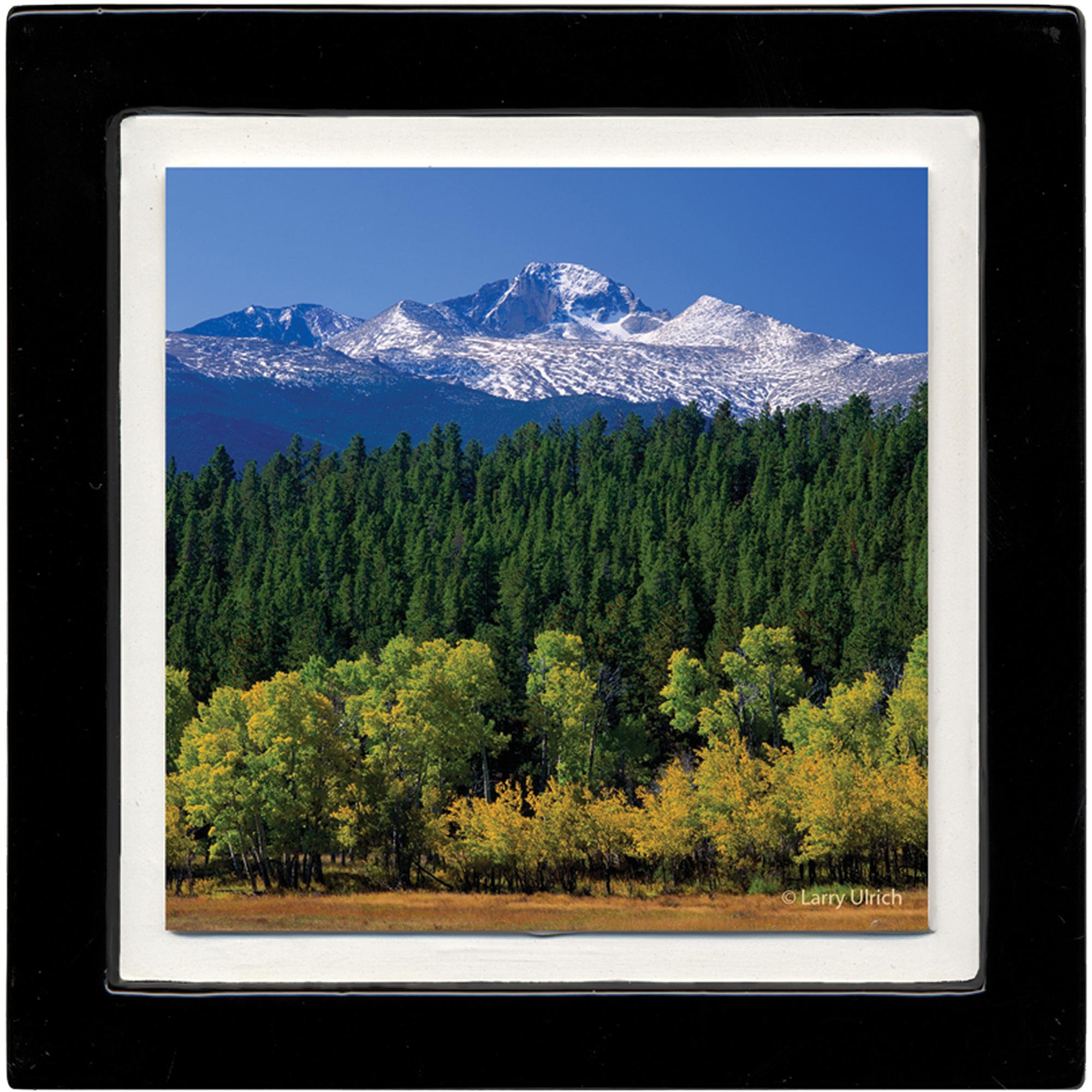 Thirstystone Ambiance Drink Coasters Set, Aspen Landscape, Black