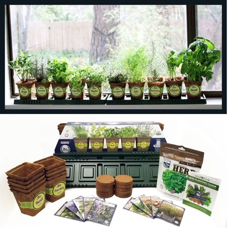 Windowsill Herb Garden Kit, Complete Herb Garden Kit, 10 Variety, Non GMO, Heirloom Herb Seeds Collection, by Sustainable Seed, Perfect Gift Idea! For Indoor or Outdoor