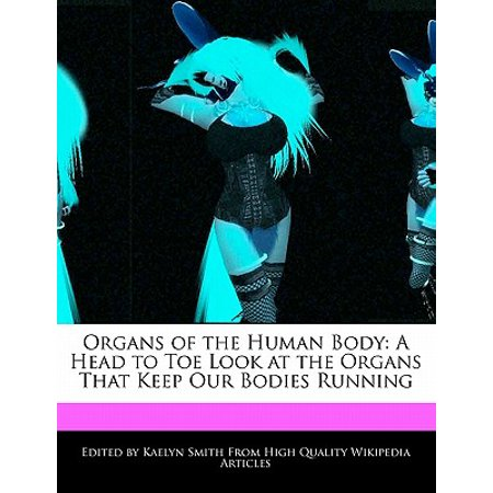 Organs of the Human Body : A Head to Toe Look at the Organs That Keep Our Bodies Running - The Human Organs