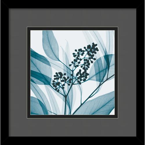 Amanti Art 'Eucalyptus I' by Steven N. Meyers Framed Photographic Print