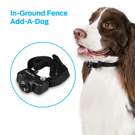 Premier Pet In-Ground Add-A-Dog