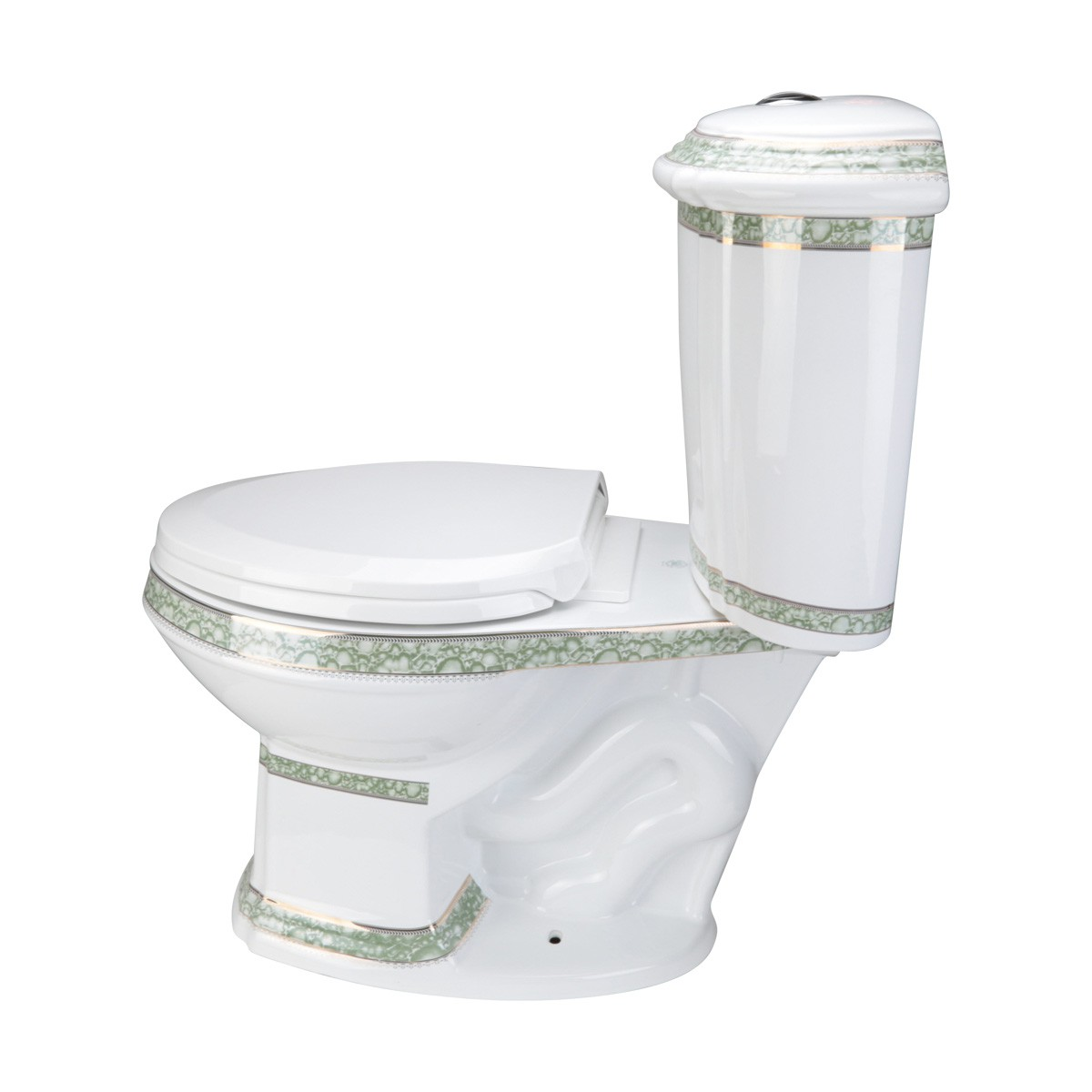 Dual Flush White Toilet Two Piece Elongated And Green