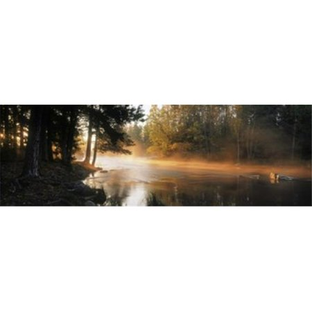 Fog over a river  Dal River  Sweden Poster Print by  - 36 x 12 - image 1 of 1
