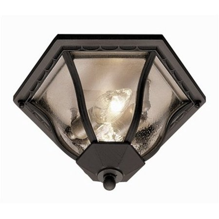 Trans Globe Lighting-4559 RT-The Standard - 13 Outdoor Flush Mount